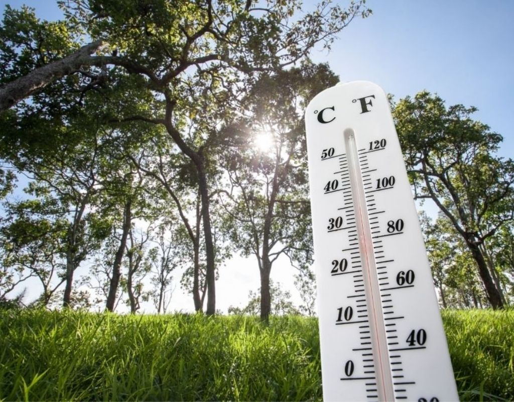 An outdoor thermometer shows high temperatures against a backdrop of green grass and deciduous trees.