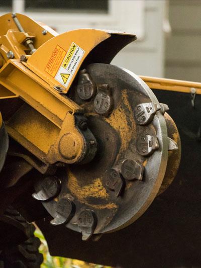 The very sharp blade on a stump grinding wheel